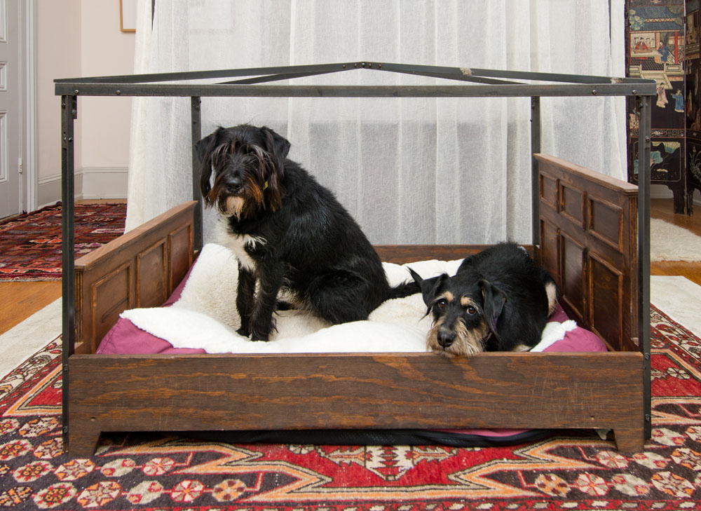 hart dog bed.jpg