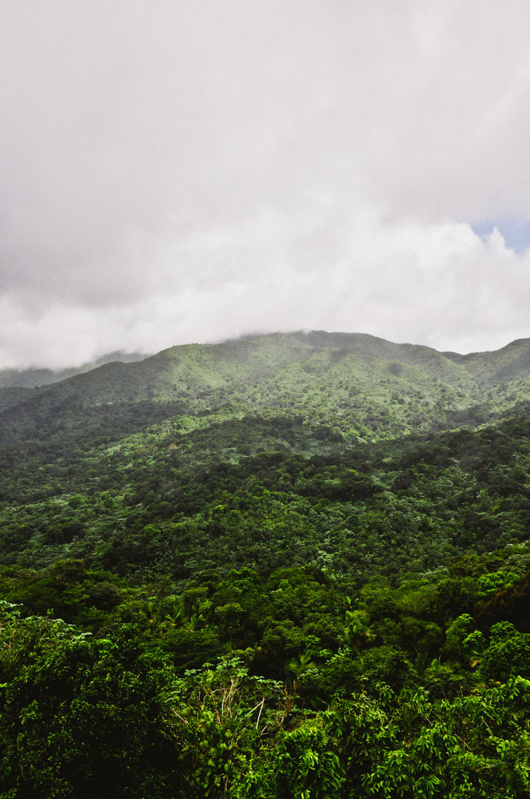 el-yunque-mountains.jpg