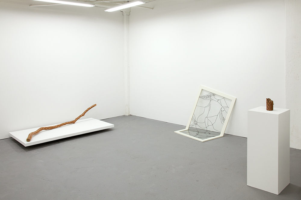 Dose Projects Space, solo exhibition by Amelia Bauer, 2014