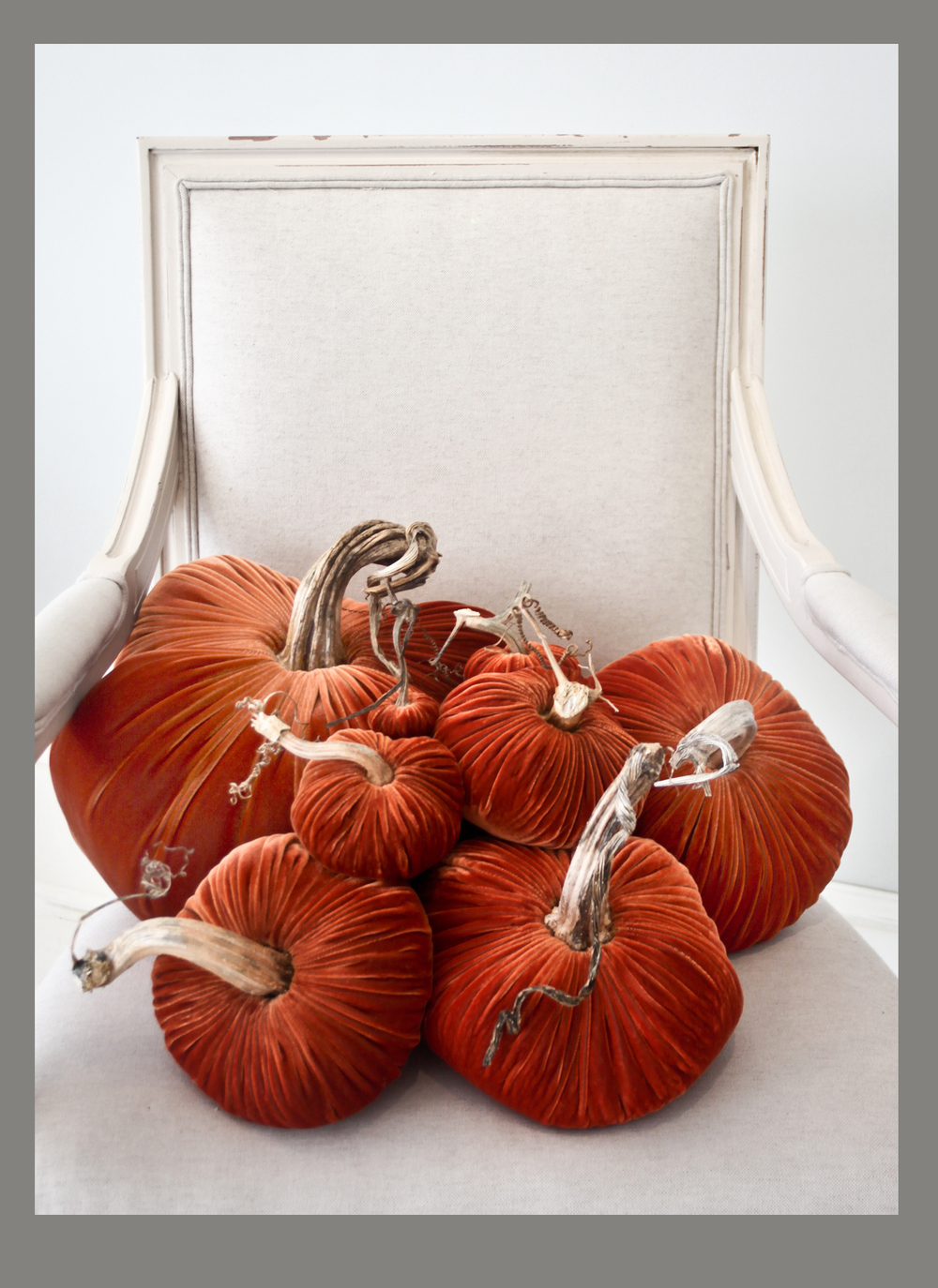 "Beautiful velvet pumpkins created with natural stems. Available at Savvy in a ""cornucopia"" of colors, including:  the oranges..."