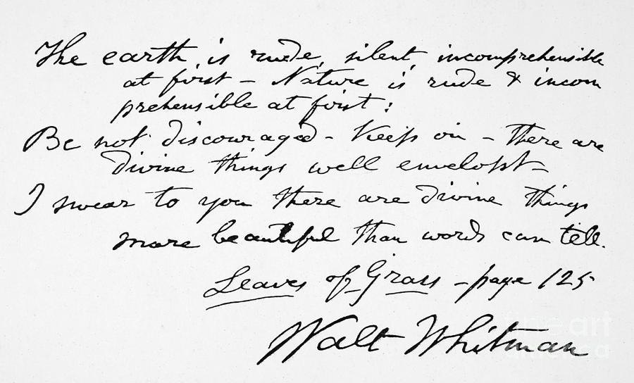 Manuscript Copy - Walt Whitman