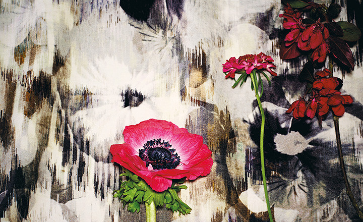 "IMAGE SOURCE: Romo Fabrics Black Edition ""Kansai Prints"""