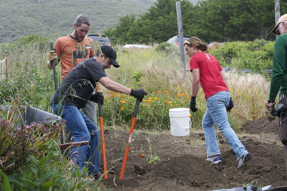 Clif Bar Volunteer Day At Slide Ranch - digging(1000px).jpg