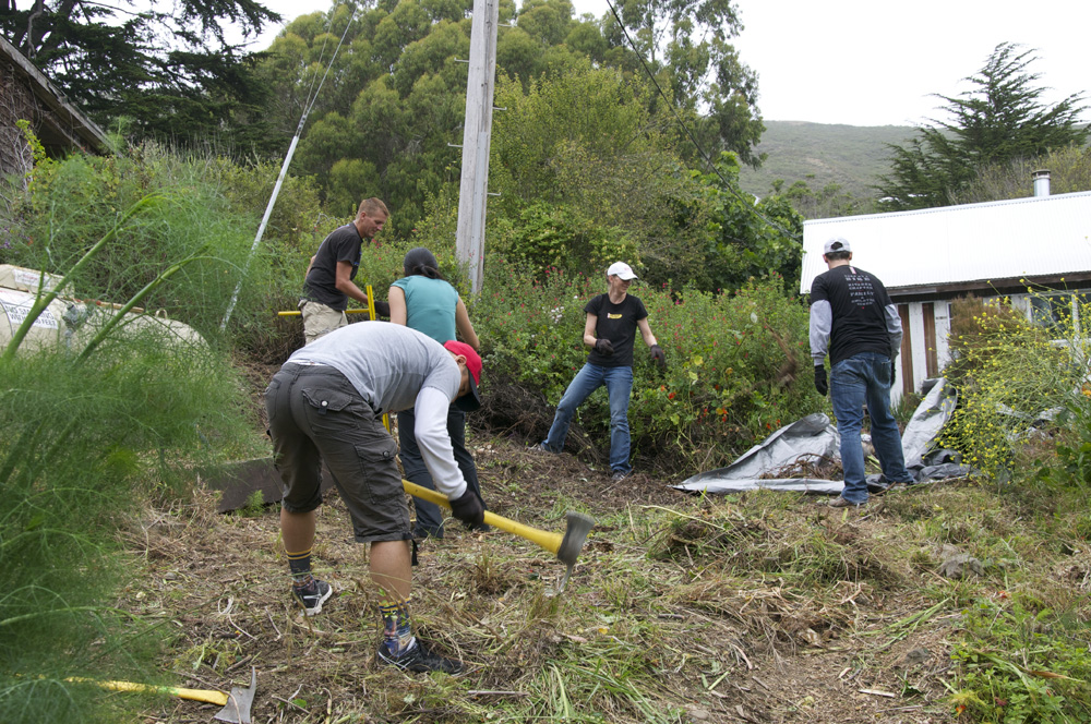 Clif Bar Volunteer Day At Slide Ranch - invasive species removal_4(1000px).jpg