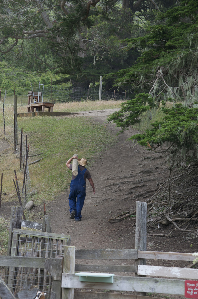 Clif Bar Volunteer Day At Slide Ranch - log carrying(1000px).jpg
