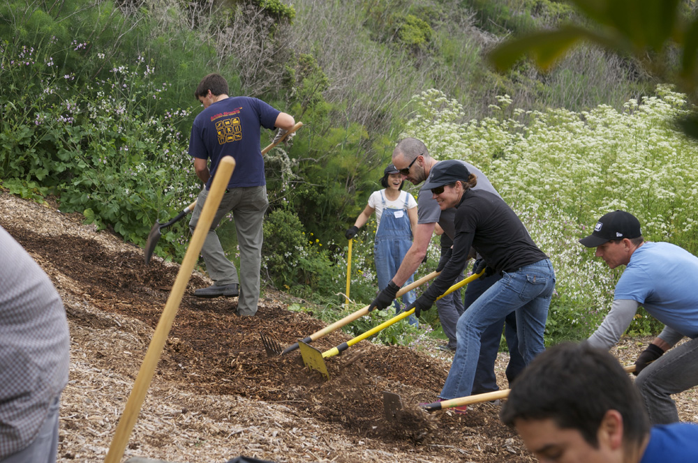 Clif Bar Volunteer Day At Slide Ranch - raking(1000px).jpg