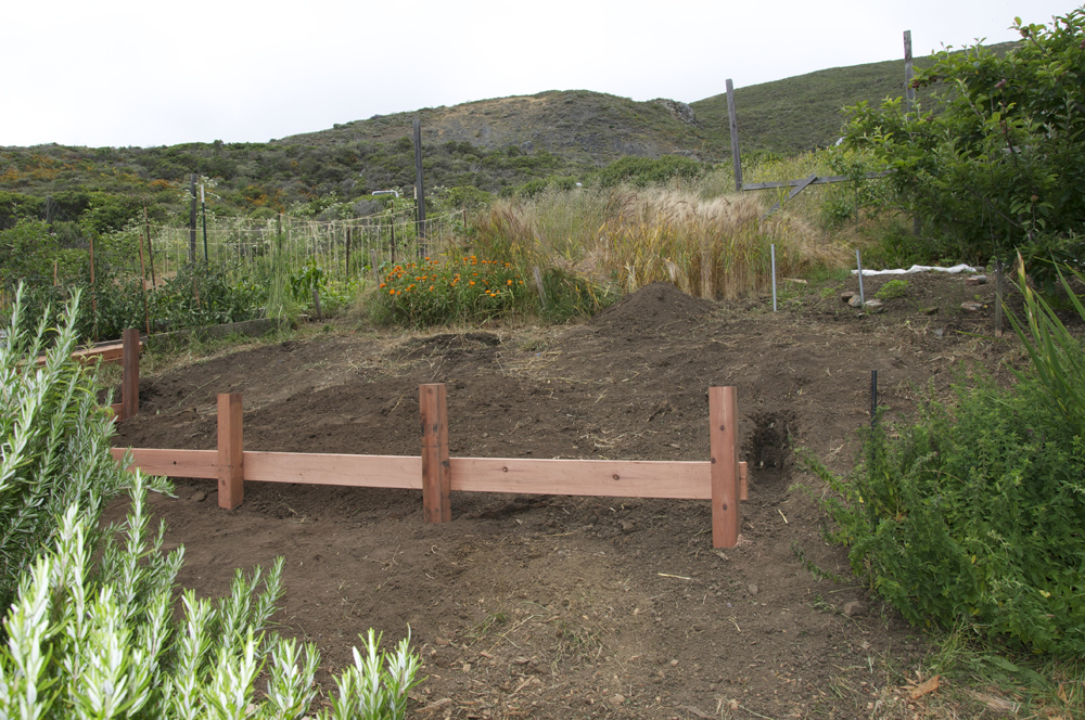 Clif Bar Volunteer Day At Slide Ranch - top of garden_after(1000px).jpg