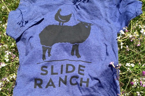 Our latest tee is super soft and great for guys and gals!