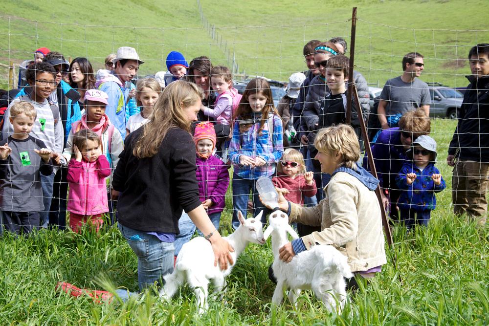 Spring Fling 2014_Baby Goat Feeding.jpg