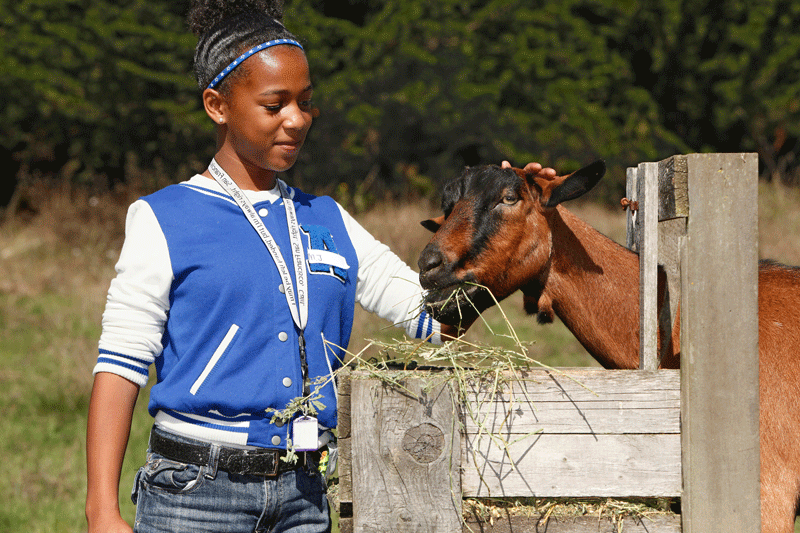 Girl-with-goat.png