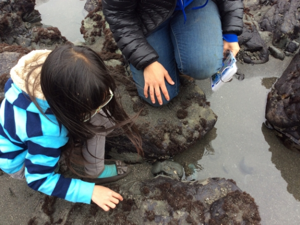 ... the first time they explored tide pools.