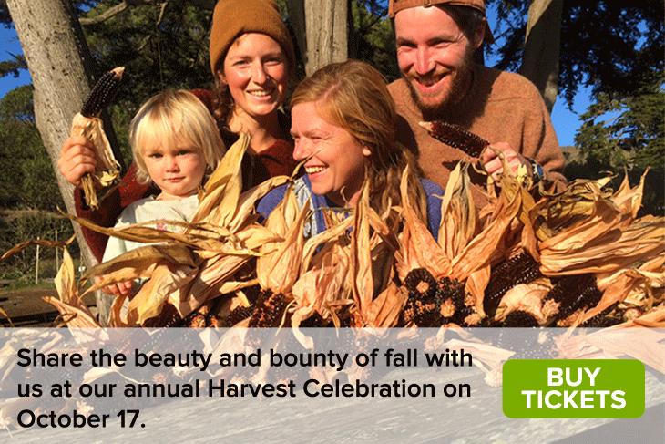 Homepage-Image_Harvest-Celebration.png