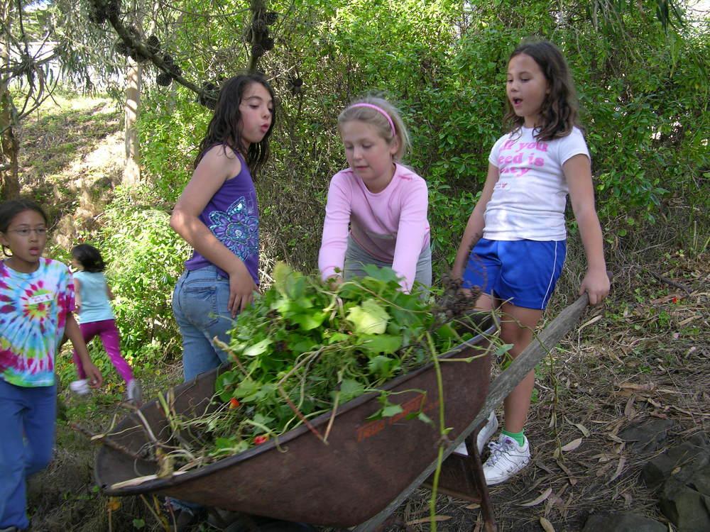 kids weed barrow.jpg