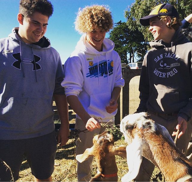AP Environmental Science students from San Rafael High School experience sustainable farming, think about where food comes from and get inspired! #slideranch
