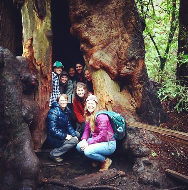 Teachers in Residence marked the end of their 3 week training with a tour of Muir Woods and watershed hike from Muir Beach to Green Gulch led by NPS Ranger Mia Monroe. Here's to a great year! #GGNRA #muirbeach #education #slideranch #muirwoods