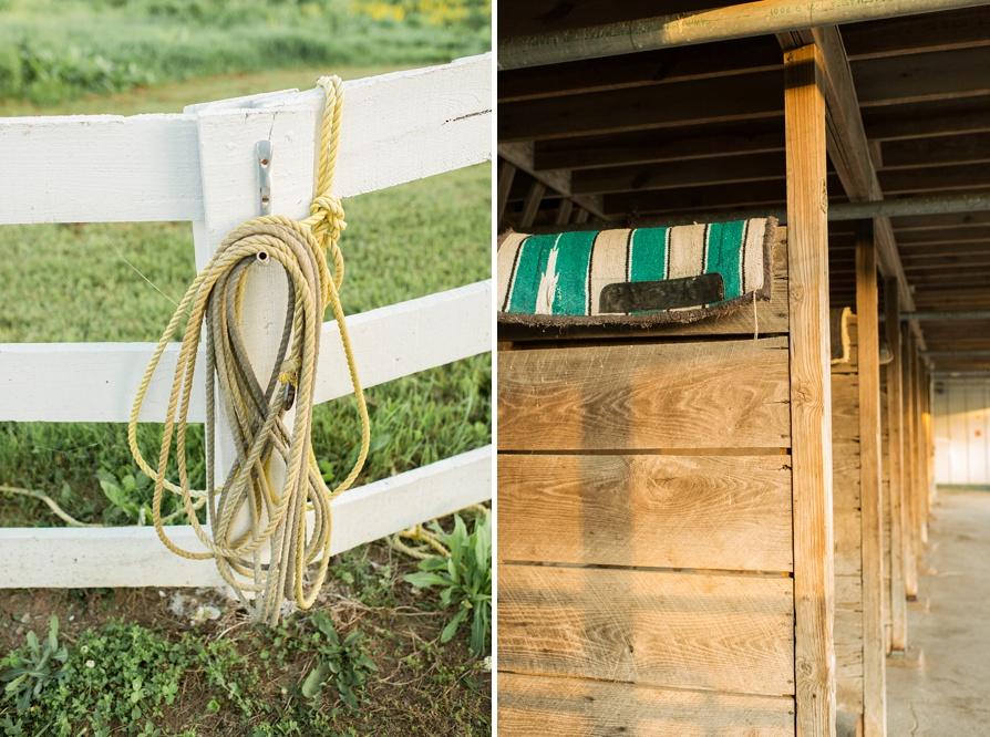 Kentucky Horse Park Engagement, Lexington Wedding Photographer