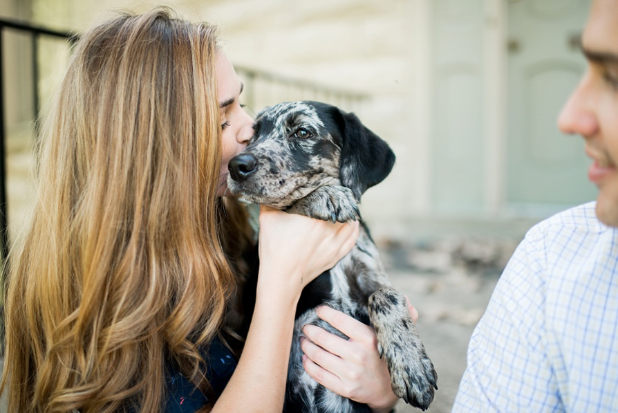 Puppy session, dog session, dog engagement, lauren w photography