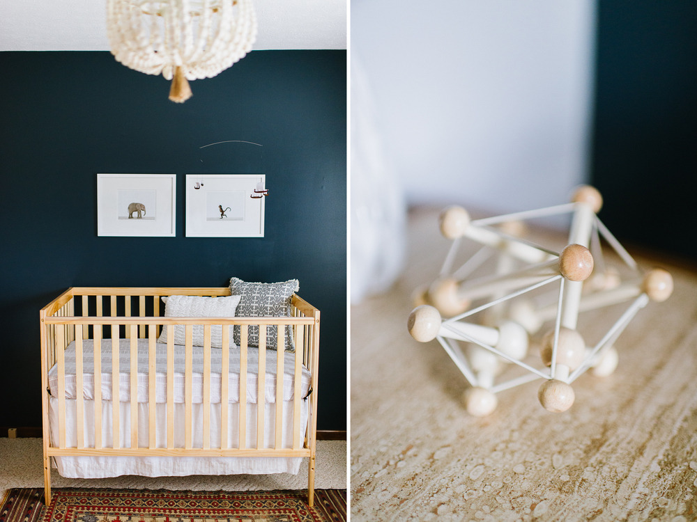 In-Home-Maternity-Session-LaurenWPhotography-7.jpg