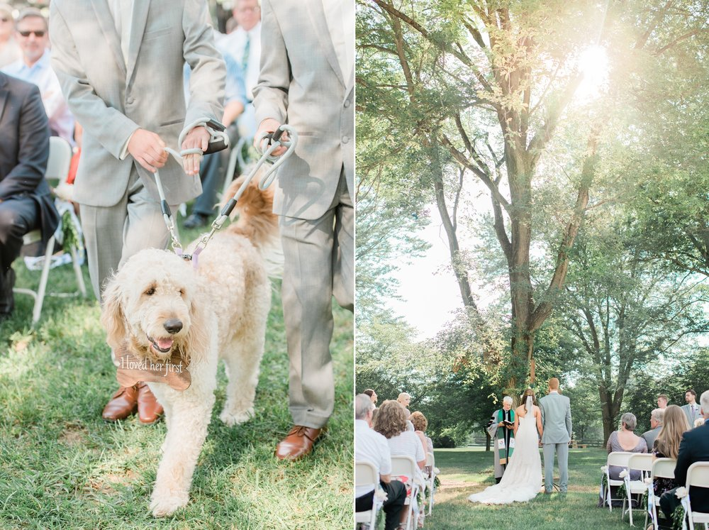 richwood-on-the-river wedding dog.jpg
