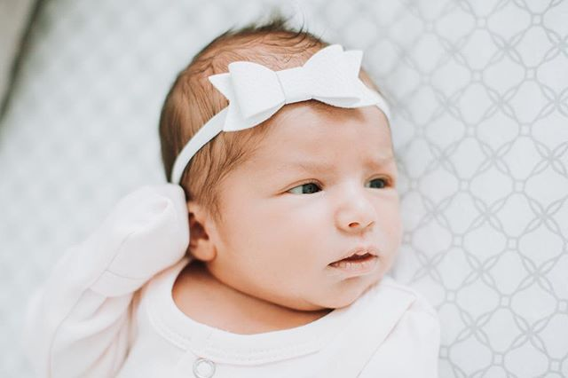 Babies 😍😍😍 my newest little niece is so tiny and cute. I can't get over her or her new pics ❤️ #kallieporterphotography