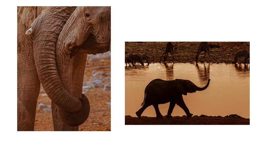 Namibia_p21_22.jpg