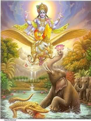 Vishnu Gajendra.jpg