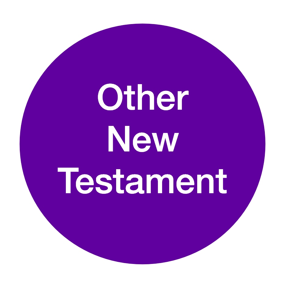 Other New Testament - Nigel Lee (2).jpg
