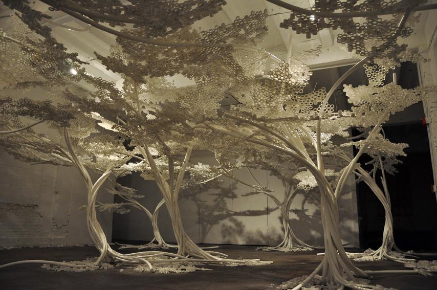PP Trees