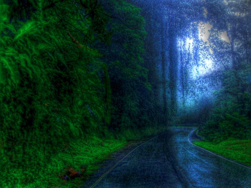 Rainy Drivesm.jpg