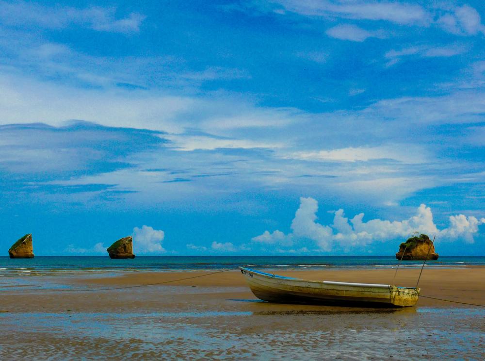 SaritaPhotos-20090823-1200.jpg