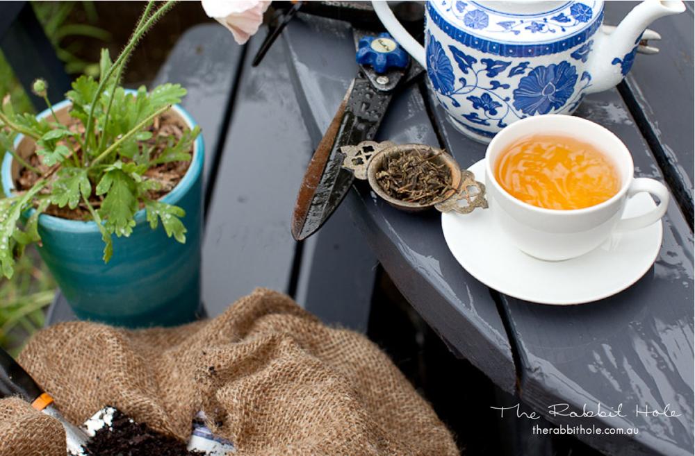 Organic Dragonwell - Organic Green Tea with a rich, nutty and earthy liquor