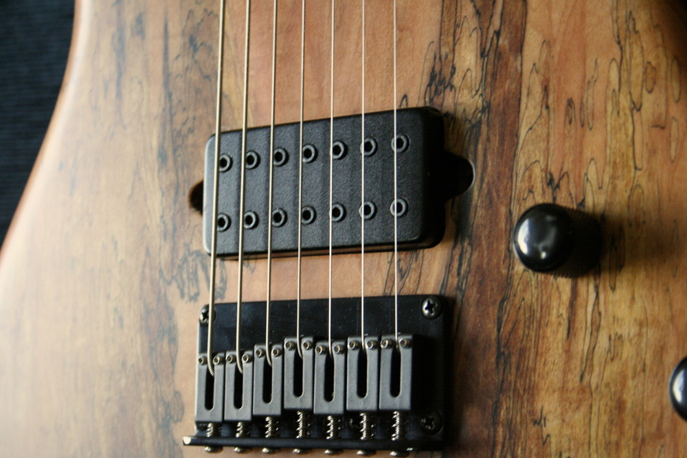 Custom Carvin 7 String Electric