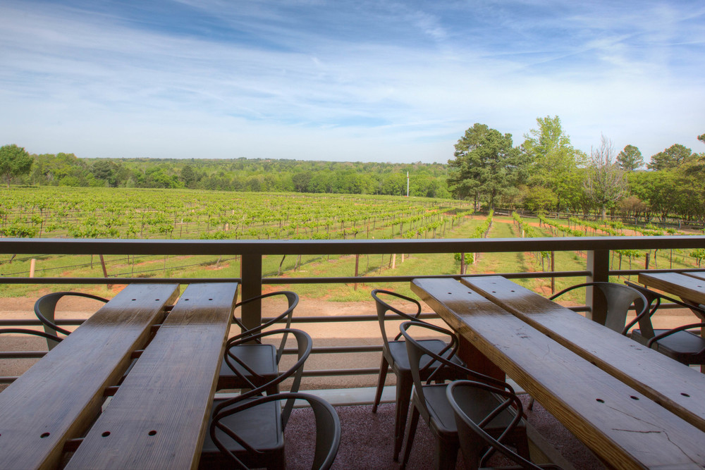 View from the tasting room patio
