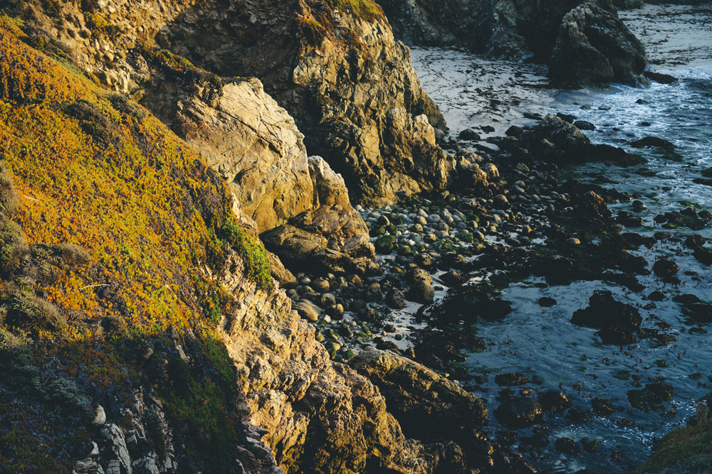 Coast-17.jpg