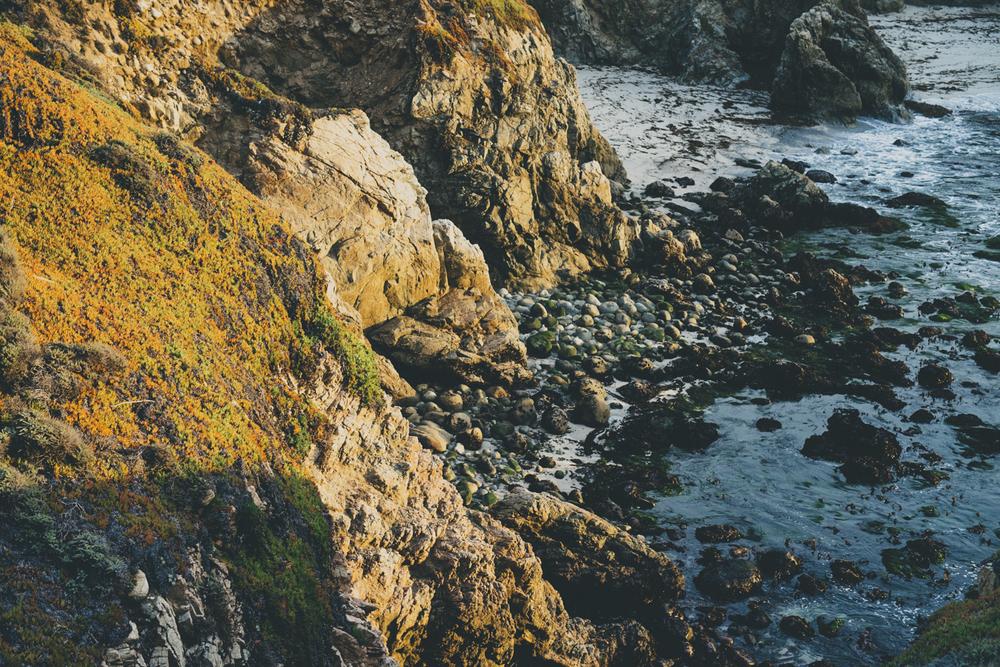 Coast-13.jpg