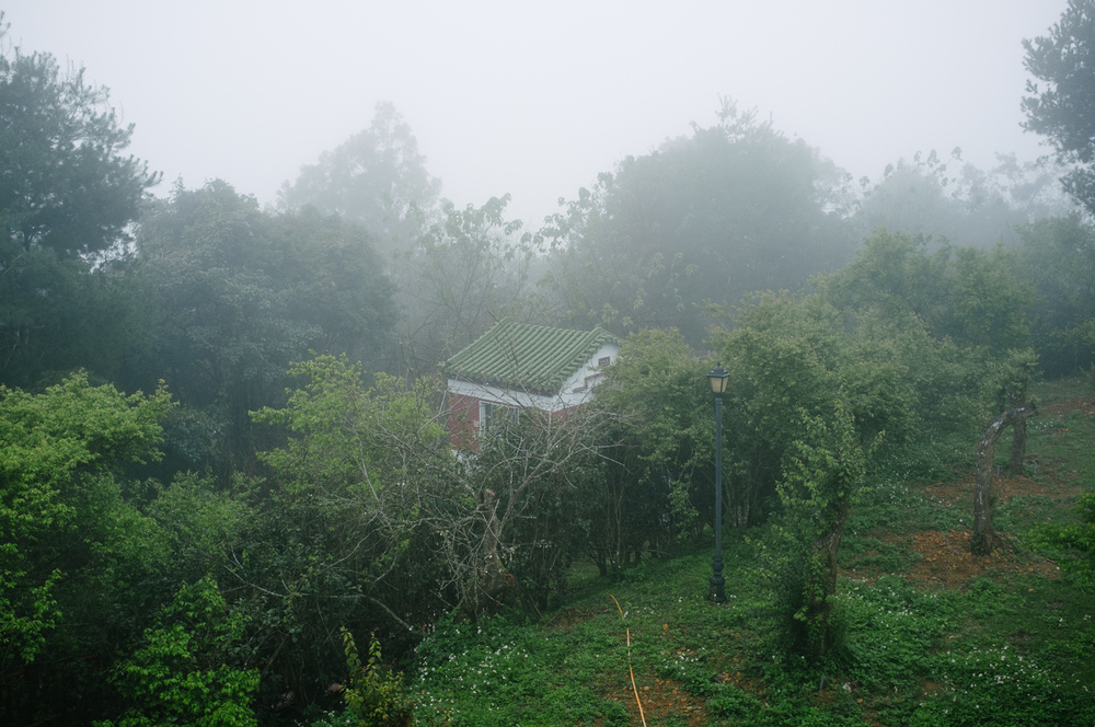 0135-Taiwan_DSCF1711.JPG