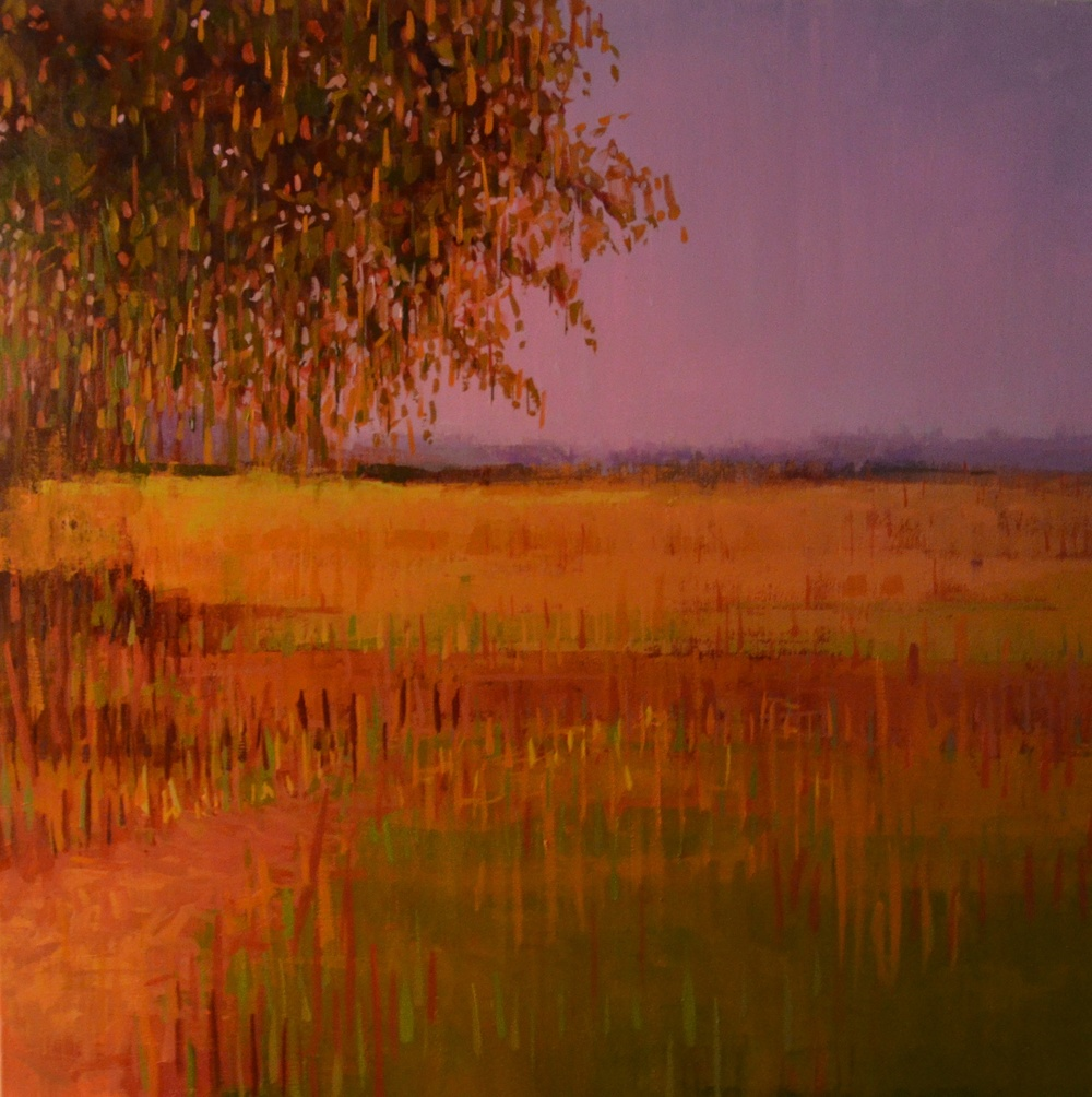 Late Summer Pasture, Looking West_oil on canvas_36x36_3200.JPG