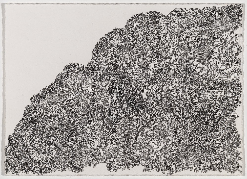"Stamps, ""Knot Apparent"", ink on paper, 4.25x6 image size, 7.75x9.5 framed, $500"