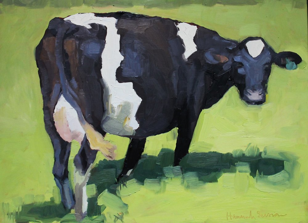 """Blue Faced Cow Looking Back"", oil on panel"