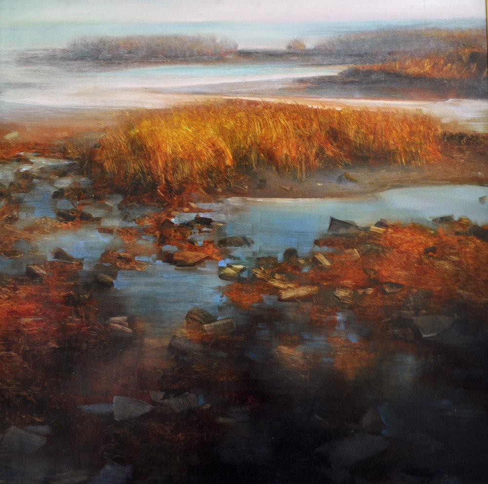 Shoreline Tidepools_ oil on aluminum_36x36_6500.jpg