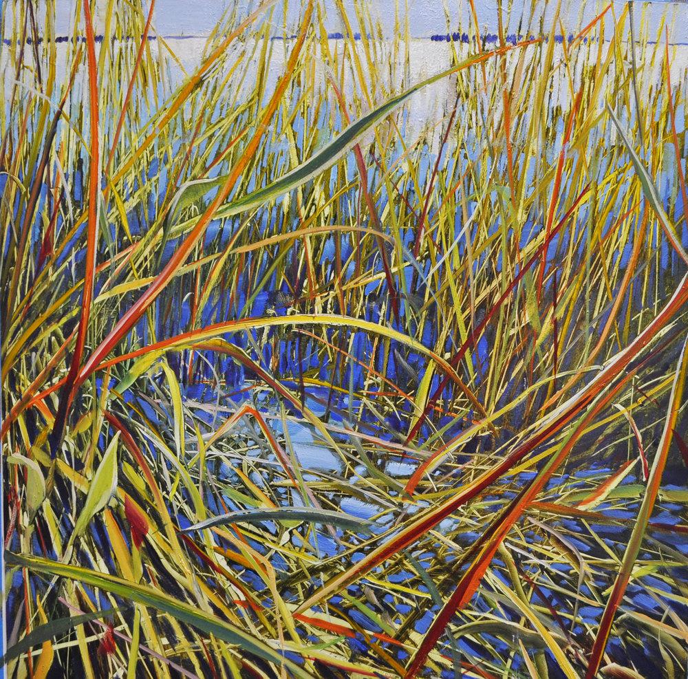 """""""Intimate Sea Grass"""", oil aluminum, 18x18, $2,200"""