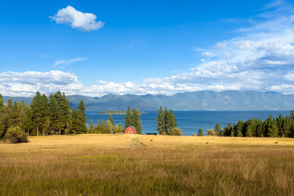 Field on Flathead Lake, Montana
