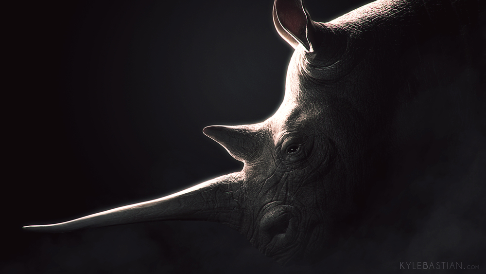 Rhino_FINAL.jpg
