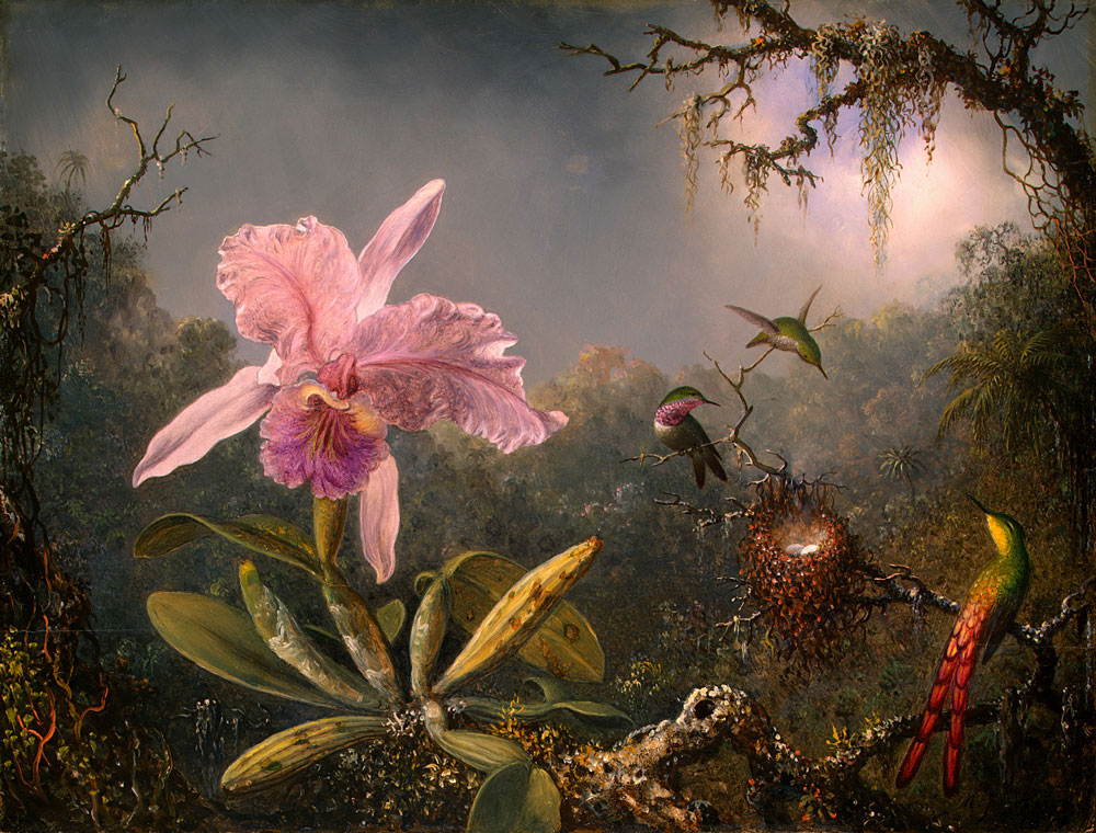Martin_Johnson_Heade-Cattleya_Orchid_and_Three_Brazilian_Hummingbirds.jpg