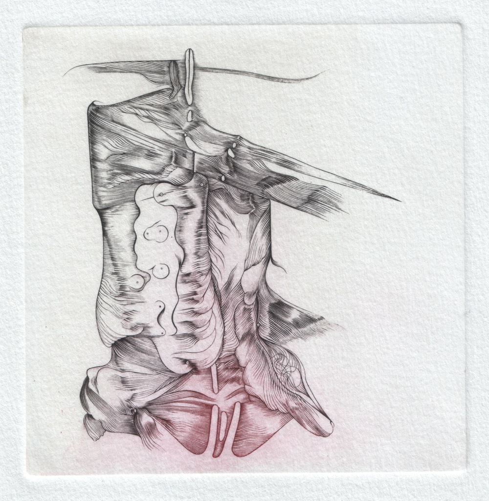 Primasch... Engraving by Vincent Ottiger