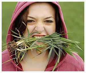 eat-grass-547b6d9f-da54-4a5b-a437-cb36b230119f.jpg