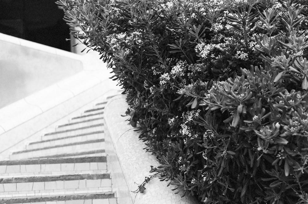 201405_SiteUpdate_barcelona_0023-3.jpg
