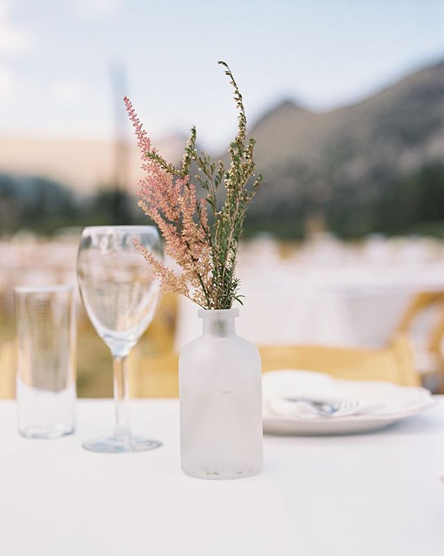 Muted tones only film captures so elegantly | Processed by @richardphotolab #braedonweddings #weddingphotographer #weddinginspiration #weddingdetails #weddingideas #weddingday #wedding #weddinginspo #fineartwedding #destinationwedding #destinationweddings #destinationweddingphotographer  #bridalportrait #bride #instawedding