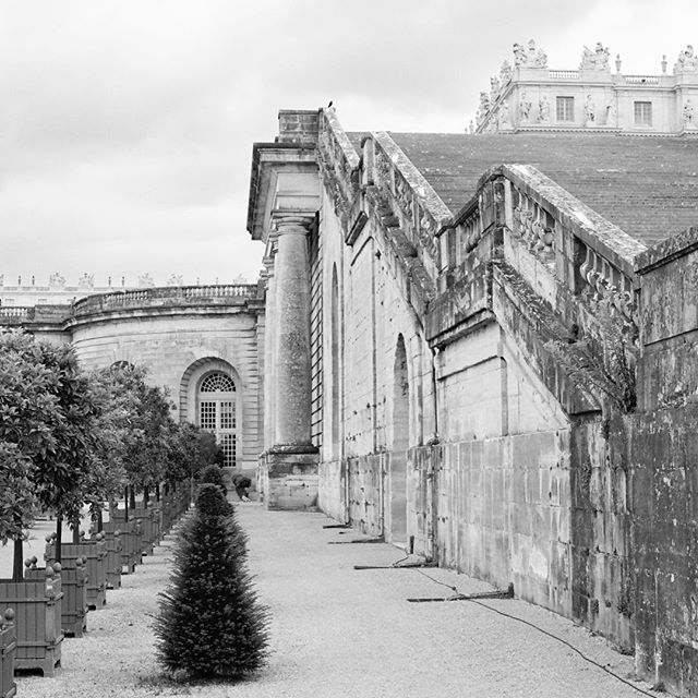 To the side of Versailles.⠀ .⠀ .⠀ .⠀ .⠀ .⠀ #filmsupplyclub #filmsupplyclubmember⠀ #filmsupply #filmphotography #filmisnotdead #analoglove #filmwins #KeepFilmAlive #onfilm #filmcommunity #filmphotooftheday #filmshooter #filmphotographic #shootfilm #ishootfilm #filmcommunity #filmnotfilters #fineartfilm #travel #lifestyle #adventure #travelvibes