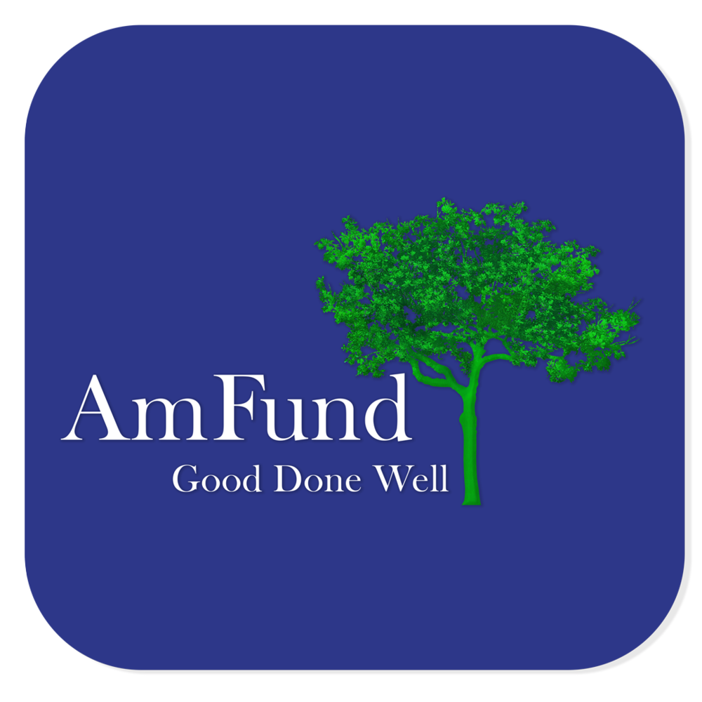 AmFund-Logo-Build Blue Background_2017.png